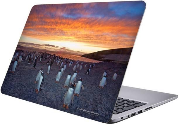 Printclub Multicolor-396 Vinyl Laptop Decal 15.6