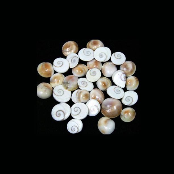 Sitare Energized 5 pcs Small Gomti Chakra Decorative Showpiece  -  0.5 cm