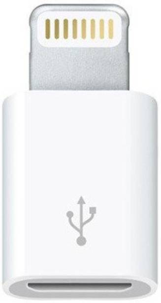 Roboster Lightning 8 Pin to Micro USB Converter/Connector Worldwide Adaptor