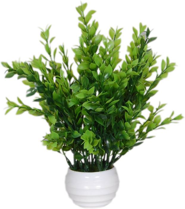 Loxia Green Wild Flower Artificial Flower  with Pot
