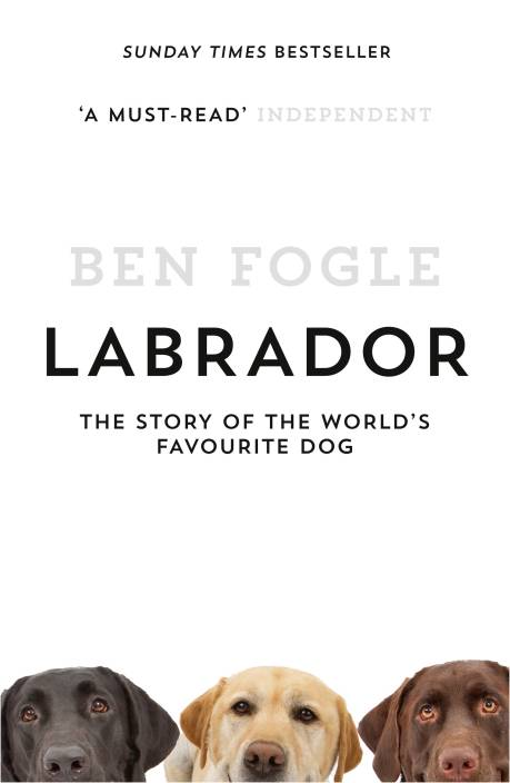 LABRADOR: Buy LABRADOR by Fogle, Ben at Low Price in India