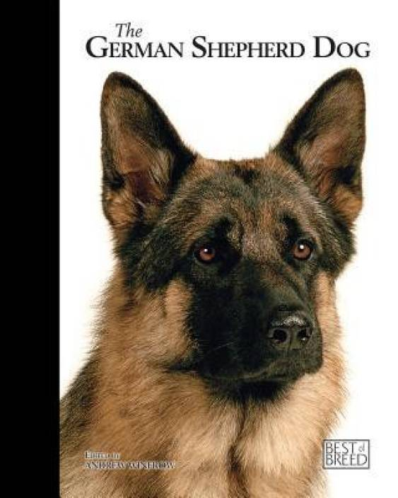 German Shepherd : Buy German Shepherd  by Winfrow Andrew at Low