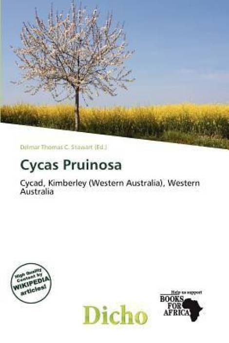 Cycas Pruinosa - Buy Cycas Pruinosa by Stawart, Delmar