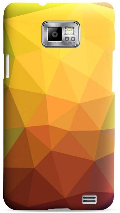 Bagsfull Back Cover for Samsung Galaxy S2 9100