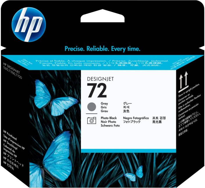 HP 72 Gray and Photo Black Printhead