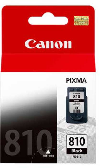 Canon PG 810 Ink Cartridge