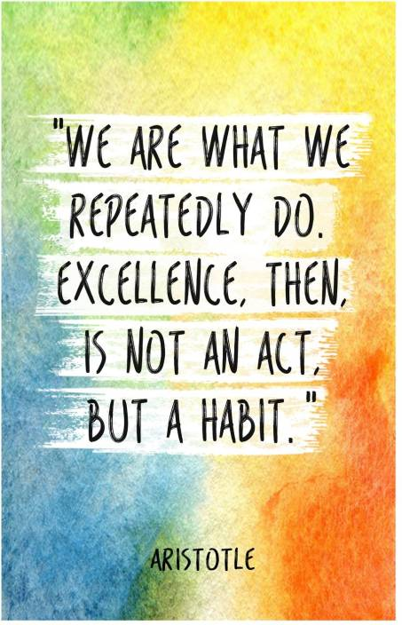 Aristotle Quote on Excellence Poster (18 inch x 12 inch ...