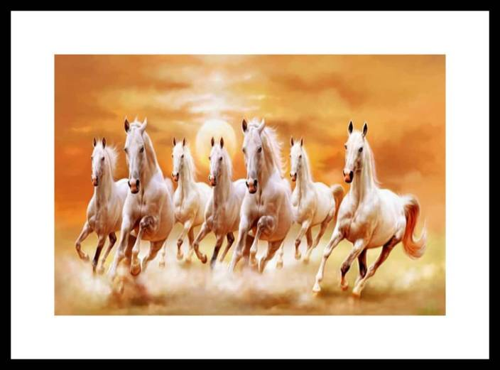 Seven White Horse Images Hd Best Horse Image 2018