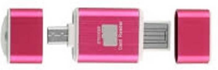 EXPERTSERVICECONSULTANCY ESCPEN 2 GB OTG Drive