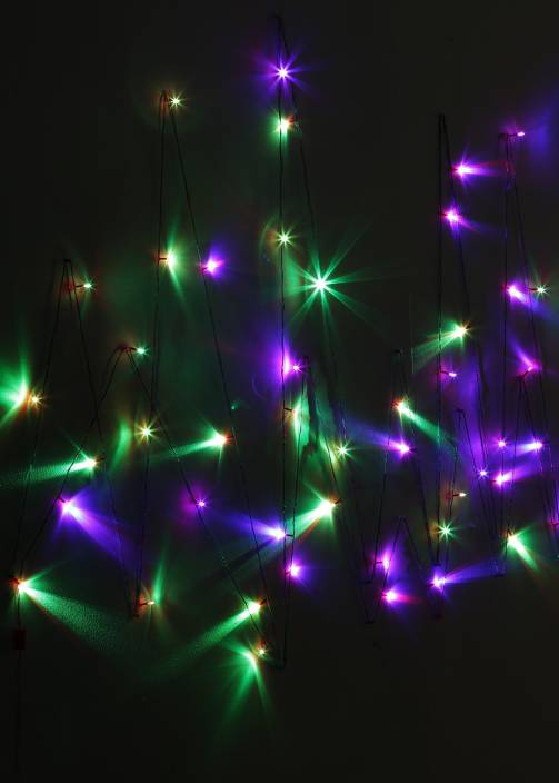 Little India 800 inch Red, Green, Blue Rice Lights