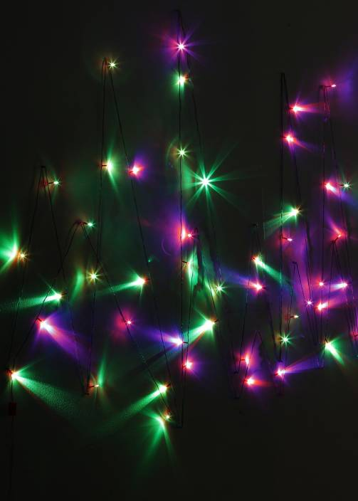Little India 600 inch Red, Green, Blue Rice Lights