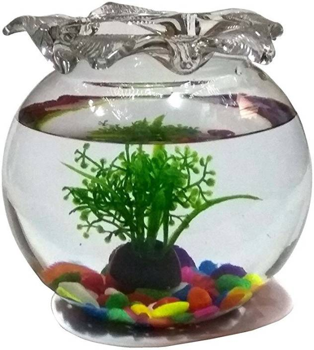 Jainsons Pet Products 2 4 L Fish Bowl