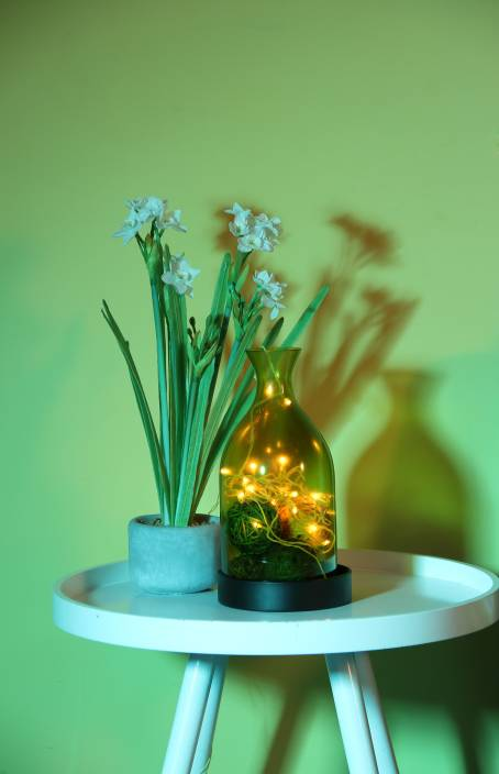 Home Delight 130 inch Yellow, Gold Rice Lights