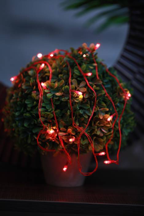 Home Delight 130 inch Red Rice Lights