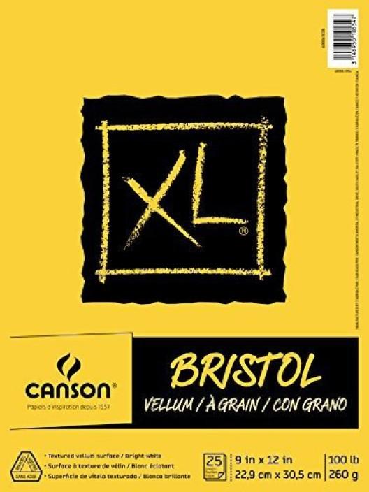 Bienfang Drawing Bristol vellum 9 in x 12 in. PACK OF 2