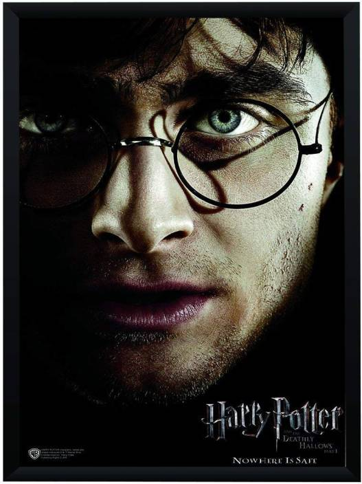 WB Official Licensed Harry Potter Deathly Hallows Part 1 Movie