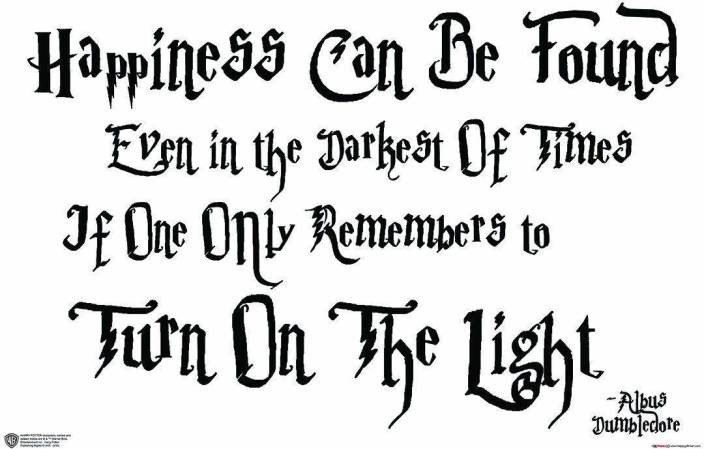 Wb Official Licensed Harry Potter Albus Dumbledore Happiness Can Be