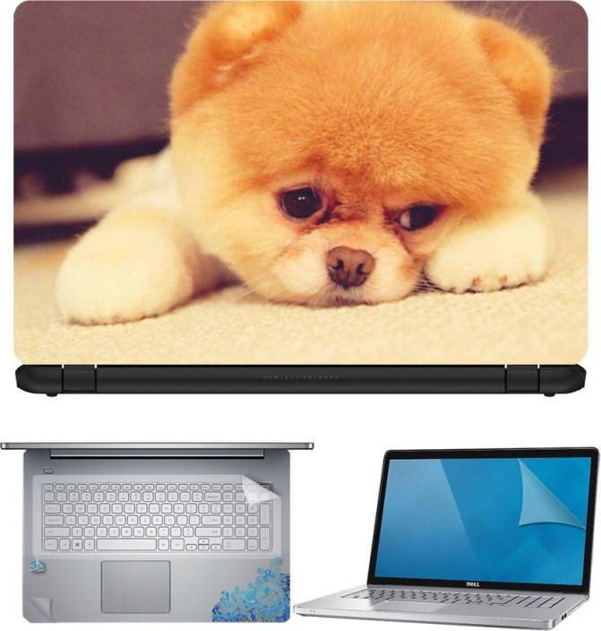 FineArts Puppy On Carpet 4 in 1 Laptop Skin Pack with Screen Guard, Key Protector and Palmrest Skin Combo Set
