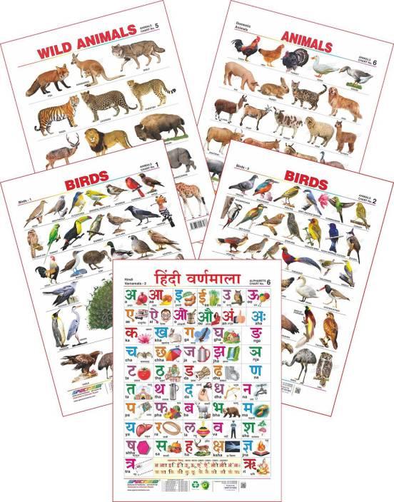 Spectrum Set of 5 Educational Wall Charts (Hindi Varnamala