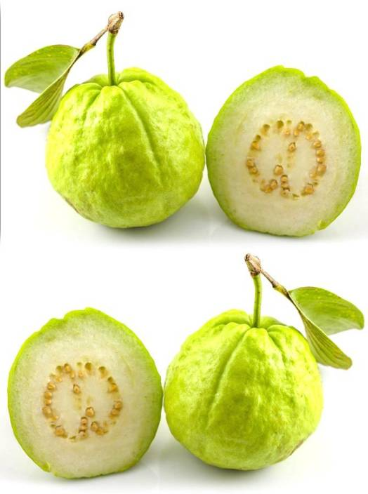 Real Seed Indian Guava (Amrood) Hybrid Imported Fruit Seeds Seed