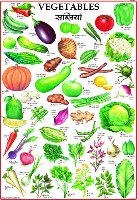 vegetables chart for children paper print   children