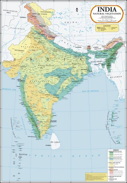 India map natural vegetation paper print maps educational india map natural vegetation paper print gumiabroncs Image collections