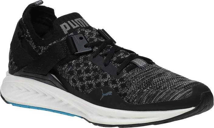 be924d7a84fc Puma IGNITE evoKNIT Lo Outdoors For Men - Buy Puma IGNITE evoKNIT Lo ...