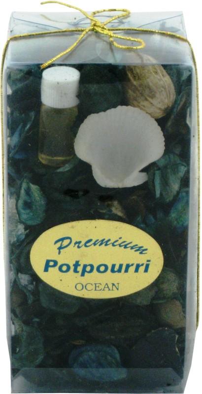Nanson Ocean Home Liquid Air Freshener(150 g)