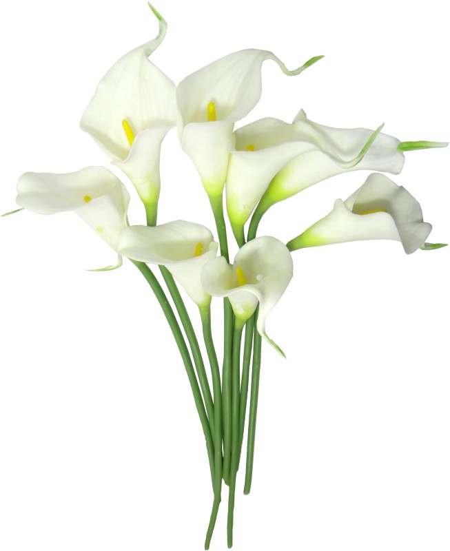 Fourwalls White Lily Artificial Flower(16 inch, Pack of 8)