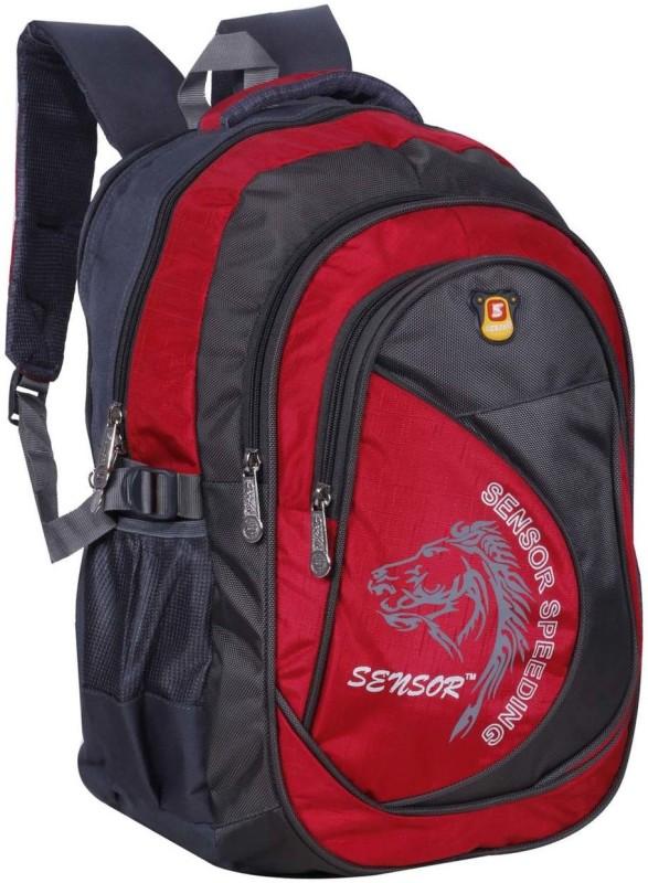 Sensor Gracia 32 L Backpack(Red, Grey)