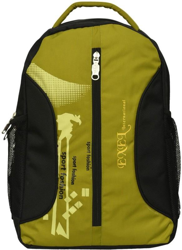 EXEL Bags EXEL Laptop backpack 25 L Laptop Backpack(Multicolor)