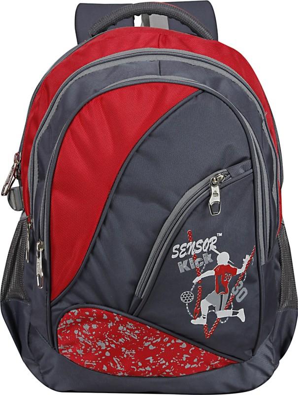 Sensor Gracia 30 L Backpack(Red, Grey)