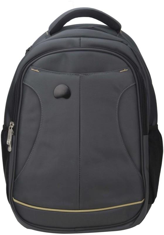 Delsey Selection Lyon 21 L Laptop Backpack(Grey)