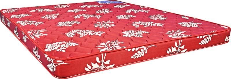 Centuary Mattresses Flexi HR 5 inch Queen High Resilience (HR) Foam Mattress