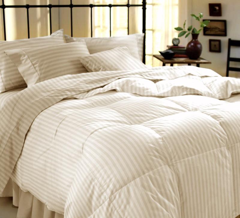 Dreamscape 220 TC Cotton Double Striped Bedsheet(Pack of 3, Multicolor)