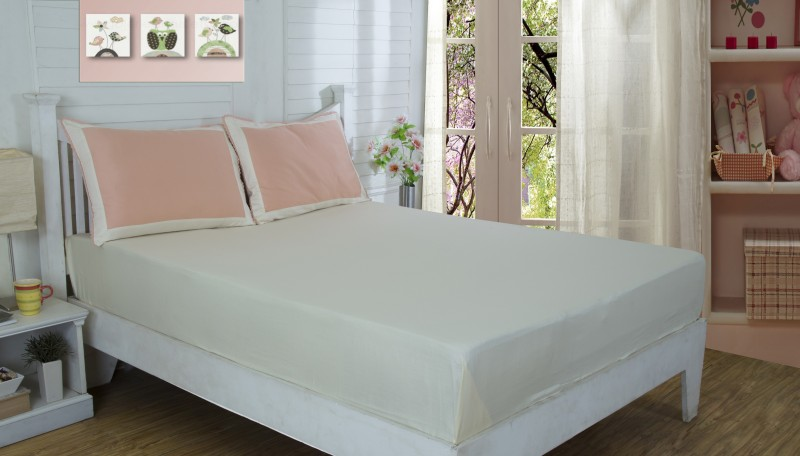 Maspar 210 TC Cotton Double King Plain Bedsheet(Pack of 1, Peach)