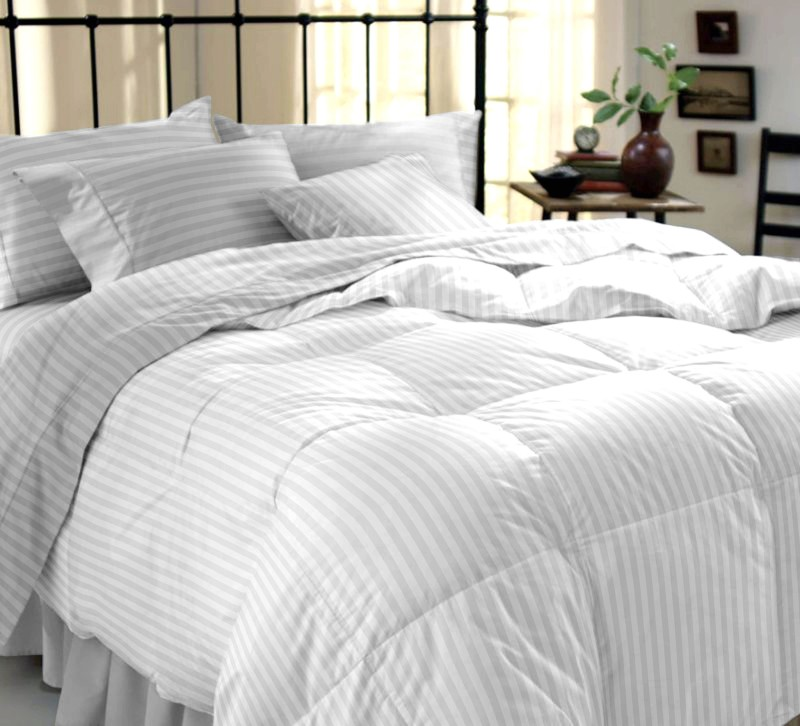 Dreamscape 220 TC Cotton Double Striped Bedsheet(Bedsheet, Two Pillow Covers, Multicolor)