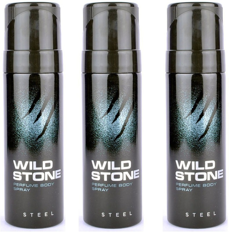 Wild Stone Steel deo pack of 3 Perfume Body Spray - For Men(360 ml, Pack of 3)