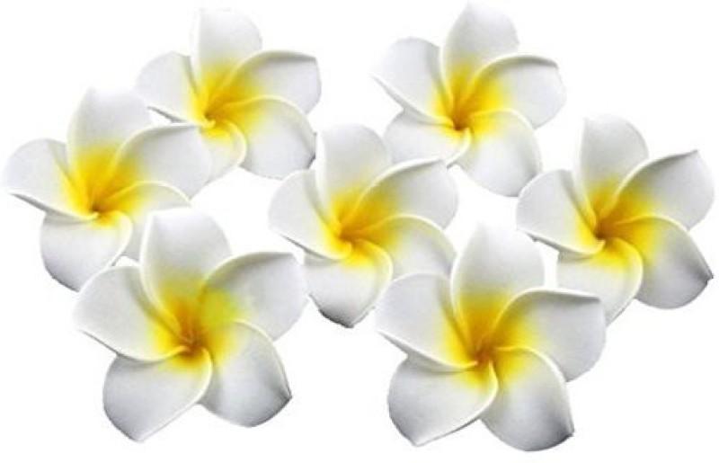 Healthcom Healthcom Premium Hawaiian Foam Flower White Artificial Plumeria Rubra For Beach,Wedding Party Decoration,Package of 100 Hair Accessory Set(Multicolor)