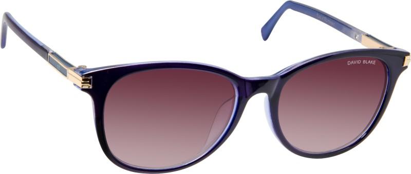 David Blake Round Sunglasses(Brown) image