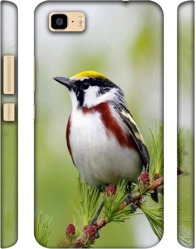 Casotec Back Cover for Asus Zenfone 3S Max(Multicolor, Plastic)