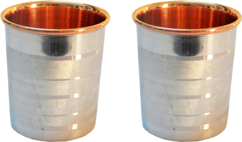 Indian Craft Villa Glass(300 ml, Steel, Pack of 2)