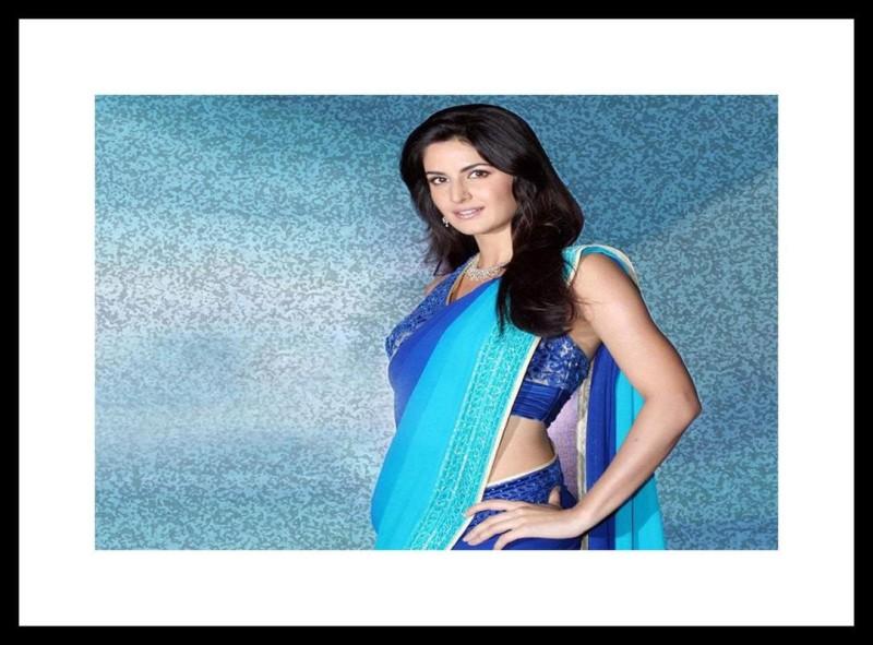 Myimage Katrina Kaif in Blue Saree Digital Printing on Cloth Framed Poster...