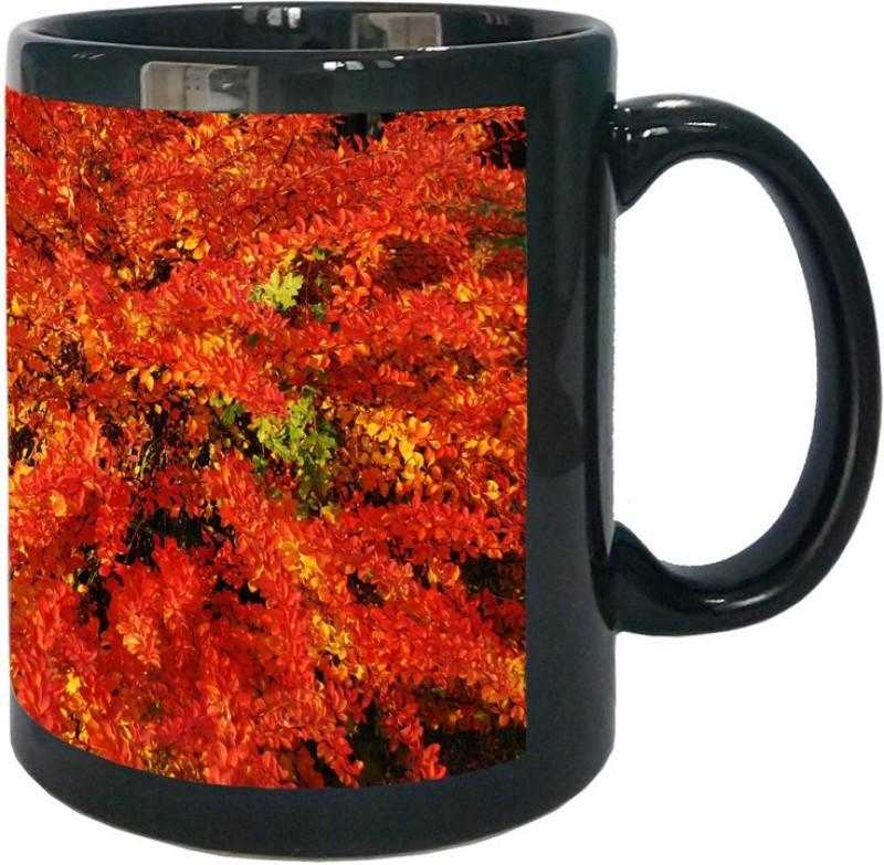 Arkist autumn in poznan poland Ceramic Mug(340 ml)