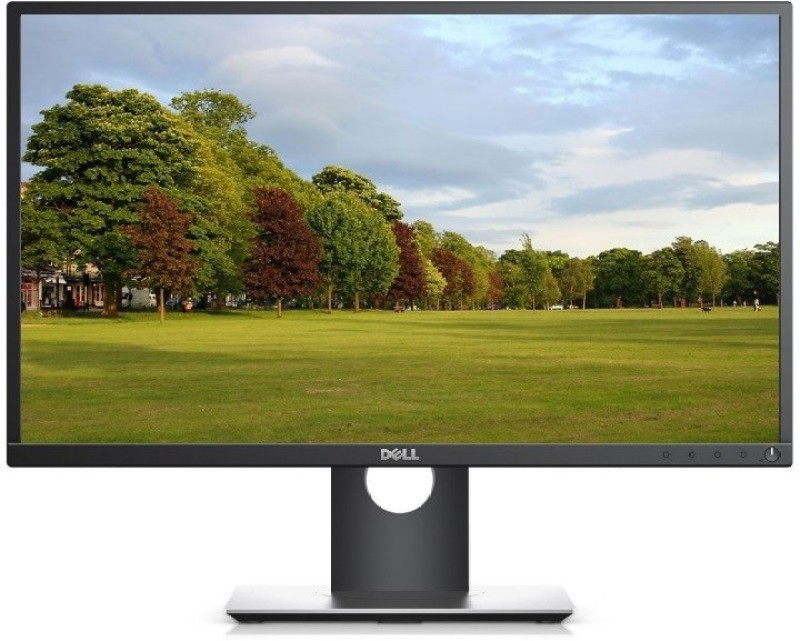 Dell 24 inch Full HD LED Backlit Monitor(P2417H) image