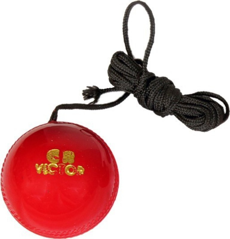 GB Hanging & Knocking Cricket Training Ball(Pack of 1, Red)