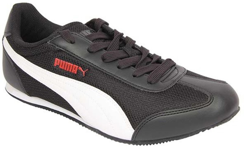 Puma Vesuvius DP Running Shoes(Black)