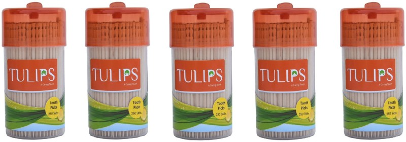 Tulips Wooden Toothpicks 250 Sticks (Pack of 5)(6.5 cm, Pack of 1250)