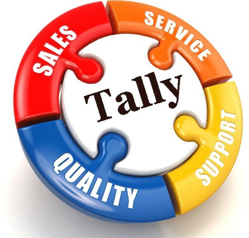 tally Tally ERP9 GST READY Original Silver Single User(one year)