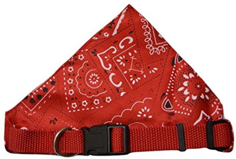 Foodie Puppies Bandana for Dog, Cat(Multicolor)